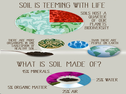 🎈 Public Lab: DIY Soil Texture Tests- Learn more about your