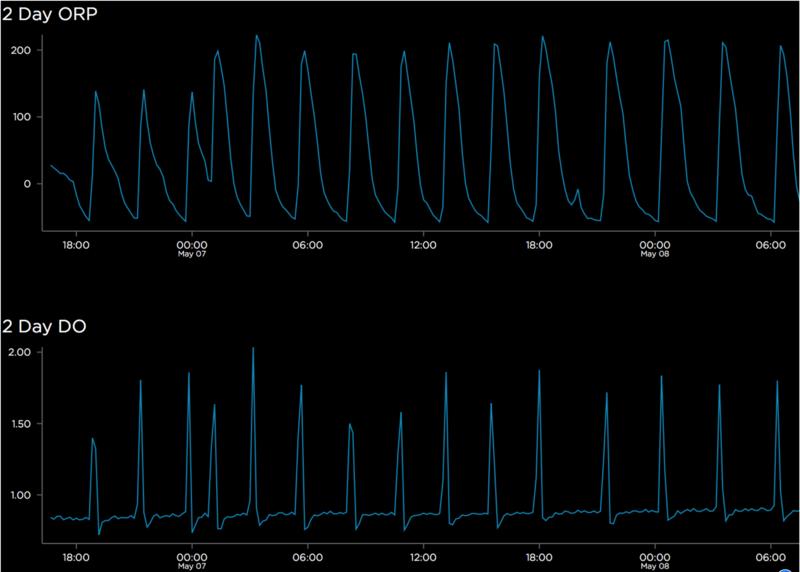 ORP DO sensor measurements