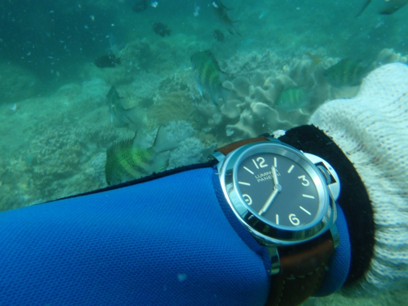 one nice thing about having an elven wrist is that you dont need an extension strap for wearing the watch over a wetsuit