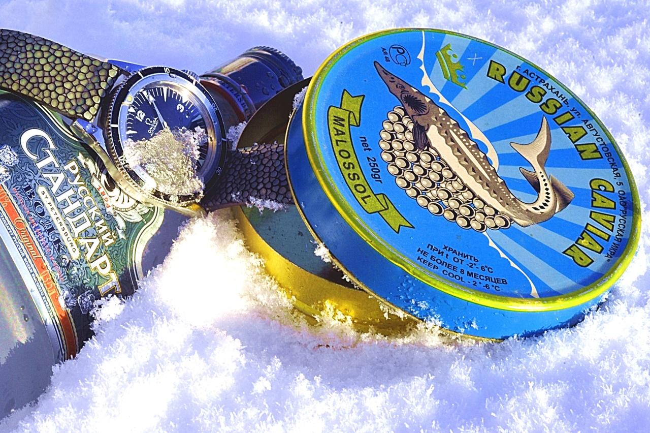 Reverso Grande GMT sur galuchat caviar Wristscan_image.2066013