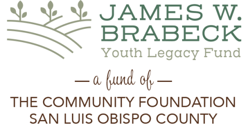 James W. Brabeck Youth Legacy Fund