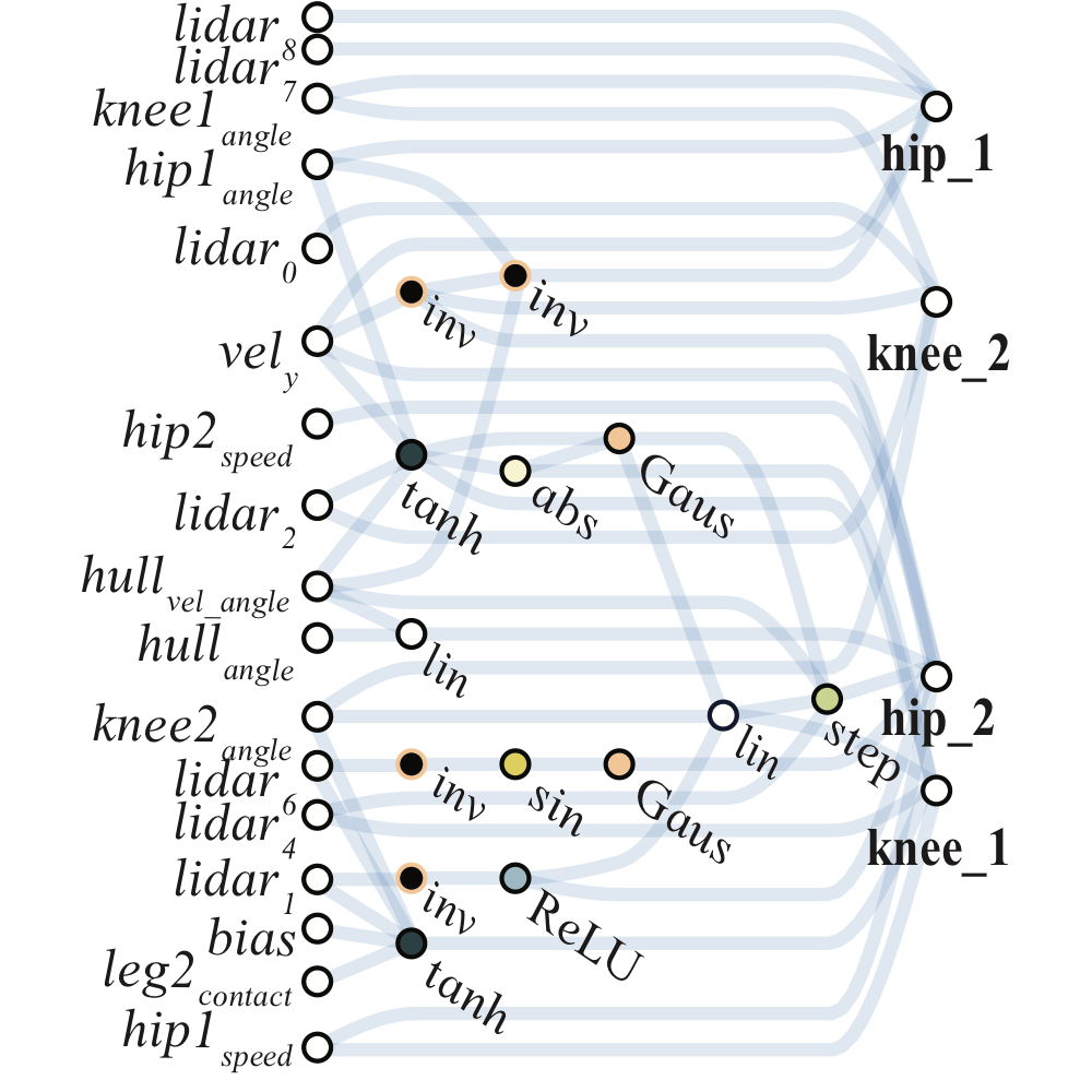 Weight Agnostic Neural Networks on