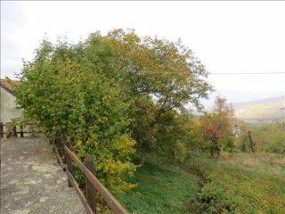 Foto 1 di Villa SP51, Farini