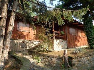 Foto 1 di Villa strada d'Harcourt, Torino