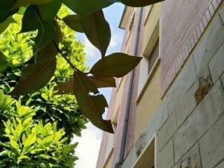 Foto 1 di Trilocale via Pasubio, Bologna (zona Saffi)