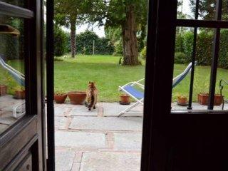 Foto 1 di Villa via Tepice, Pino Torinese
