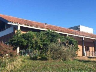 Foto 1 di Villa strada Provinciale di Pasquaro 1, Rivarossa