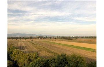 Foto 26 di Trilocale Corso Savona 12, Villastellone