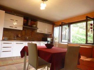 Foto 1 di Appartamento strada regionale, Valtournenche