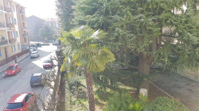 Foto 11 di Trilocale via buozzi, Pinerolo