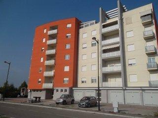 Foto 1 di Trilocale via Creti, Budrio