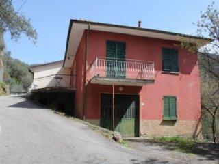 Foto 1 di Villa Via Castagnola 18, Ne