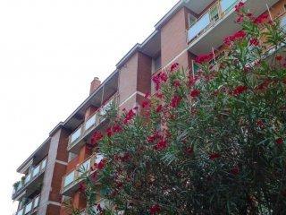 Foto 1 di Bilocale via Ada Negri 2, Cinisello Balsamo