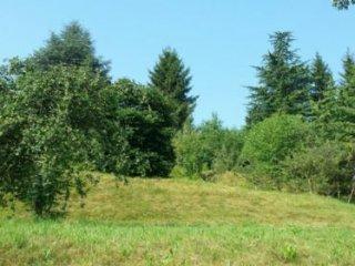 Foto 1 di Terreni Edificabili semicentro, Madonna Del Sasso