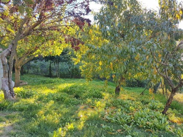 Foto 6 di Casa indipendente VIA CERRABELLO, Tonengo