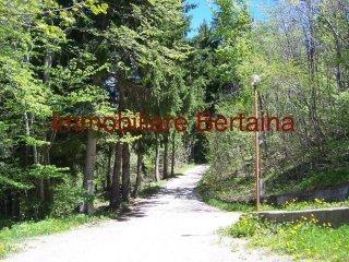 Foto 1 di Quadrilocale frazione Limonetto, Limone Piemonte