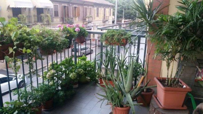 Foto 4 di Trilocale via Venaria 53, Torino (zona Madonna di Campagna, Borgo Vittoria, Barriera di Lanzo)