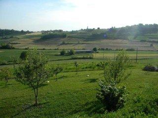 Foto 1 di Villa Montiglio Monferrato