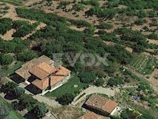 Foto 1 di Villa Savignano Sul Panaro