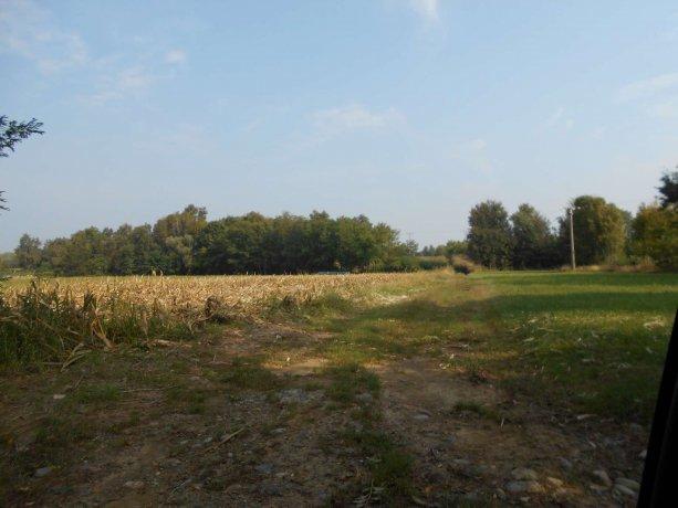 Foto 3 di Terreni Agricoli San Francesco Al Campo