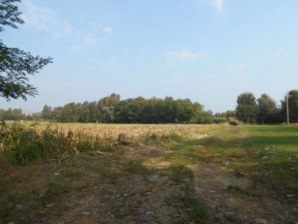 Foto 4 di Terreni Agricoli San Francesco Al Campo