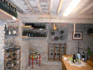 Foto 1 di Casa indipendente viale Mentana, Parma