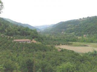 Foto 1 di Rustico / Casale SP299, Pezzolo Valle Uzzone