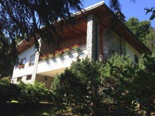 Foto 1 di Villa via Miasola 319, Coassolo Torinese