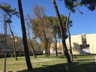 Foto 1 di Attico / Mansarda viale Ippocastani 98, Ravenna