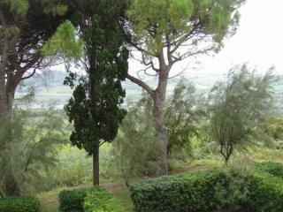 Foto 1 di Trilocale strada del Monte, frazione Gabicce Monte, Gabicce Mare