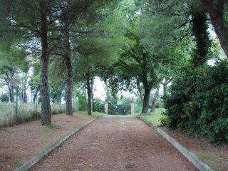 Foto 1 di Villa strada del Monte, frazione Gabicce Monte, Gabicce Mare