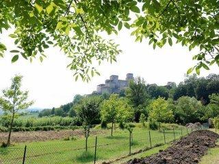 Foto 1 di Villa strada Pilastro 5, frazione Torrechiara, Langhirano