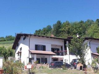 Foto 1 di Villa SP199 34, frazione San Antonio, Monticello D'alba