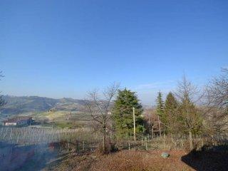 Foto 1 di Villa strada Provinciale 158 1, frazione Madonna Di Como, Alba