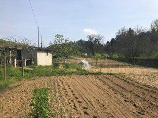 Foto 1 di Casa indipendente Montaldo Roero