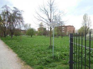 Foto 1 di Trilocale Bologna (zona Lame)