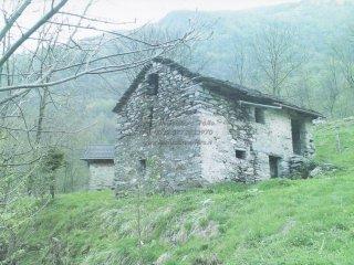 Foto 1 di Rustico / Casale via Provinciale 10, Gurro