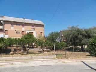 Foto 1 di Bilocale via Alcide De Gasperi, Zambrone