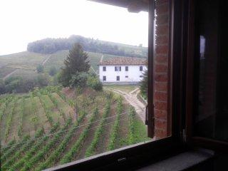 Foto 1 di Casa indipendente via Fausoni, frazione Neive Capoluogo, Neive