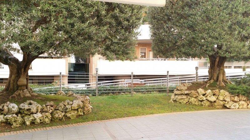 Foto 13 di Trilocale via Copenaghen 9, Roma centro
