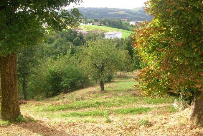 Foto 10 di Rustico / Casale via lusignano , 479, frazione Monteombraro, Zocca