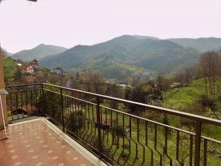 Foto 1 di Appartamento via Angelo Caminata, frazione San Cipriano, Serra Riccò