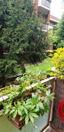 Foto 41 di Appartamento via SERVAIS 200 A 39, Torino (zona Parella, Pozzo Strada)