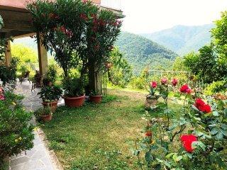 Foto 1 di Casa indipendente frazione Meco, Davagna