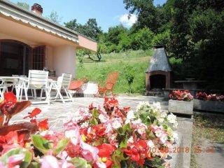 Foto 1 di Villa strada dei Tetti Bertoglio 44, Torino