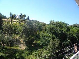 Foto 1 di Loft / Open space via conte, Genova (zona Sampierdarena, Certosa-Rivarolo)