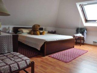 Foto 1 di Appartamento via Sant'Antonio, Rivalta Di Torino