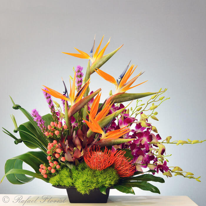 Tropical flower arrangement of birds of paradise and orchids