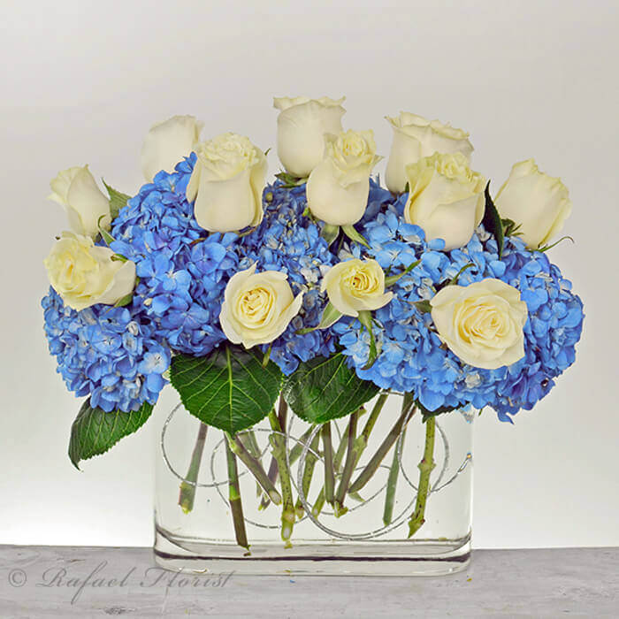 contemporary design of white roses & blue hydrangeas in a modern vase