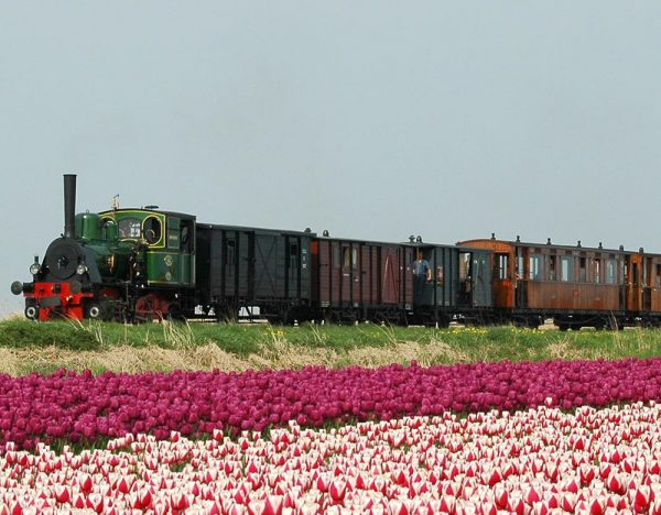 Steam Trains & Tulips of Holland | Great Rail 1